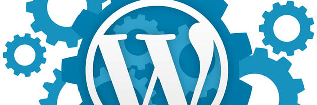 How to Make a Professional WordPress Website and Blog